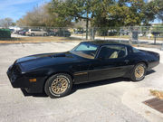 1979 Pontiac Trans Am original paint